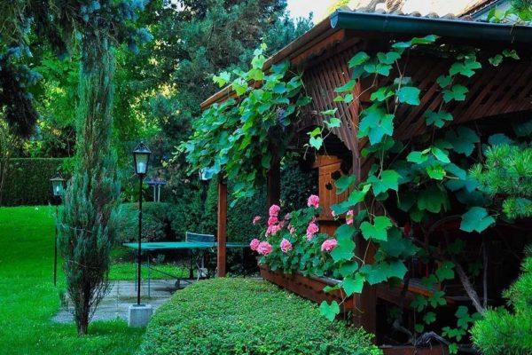 Garten inkl. Laube